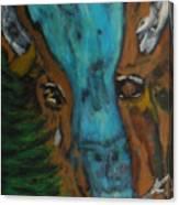 Buffalo Falls -033 Canvas Print