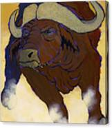 Buffalo Fury Canvas Print