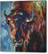 Buffalo In Blue Canvas Print