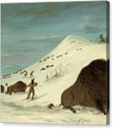 Buffalo Lancing In The Snow Drifts. Sioux Canvas Print