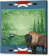 Buffalo Spirit Canvas Print