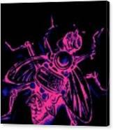 Bug, 10 Canvas Print