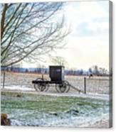 Buggy Alone In Winter Canvas Print