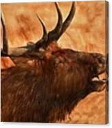 Bugling Bull Elk Autumn Background Canvas Print