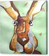 Bugsy Malone Canvas Print
