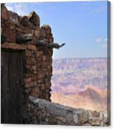 Building On The Grand Canyon Ridge Canvas Print