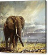 Bull Elephant Under Kilimanjaro Canvas Print