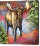 Bull Moose In Fall Canvas Print