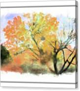 Bull Run Autumn Canvas Print