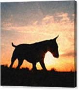Bull Terrier At Sunset Canvas Print