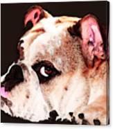 Bulldog Art - Let's Play Canvas Print