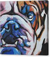 Bulldog Baby Canvas Print