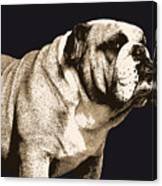 Bulldog Spirit Canvas Print