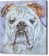 Bulldog - Watercolor Portrait.5 Canvas Print