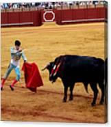 Bullfighting 22 Canvas Print