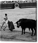Bullfighting 22b Canvas Print