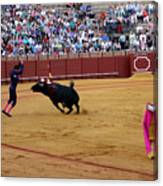 Bullfighting 35 Canvas Print
