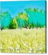 Texas Bull Nettle Canvas Print