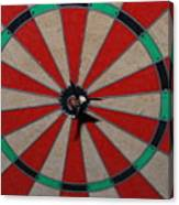 Bulls Eye Canvas Print