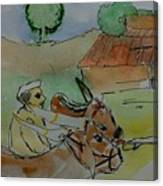 Bull's Canvas Print