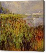 Bulrushes On The Banks Of The Seine 1874 Canvas Print
