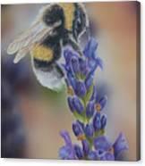 Bumblebee Nr3 Canvas Print