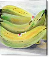 Bunch Of Bananas Canvas Print