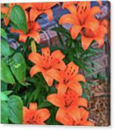Bunch Of Orange Lilies Canvas Print