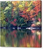 Bunganut Lake Maine Foliage 13 2016 Canvas Print
