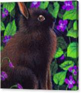 Bunny And Violets Canvas Print