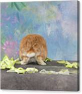 Bunny Butts Are Beautiful  Canvas Print