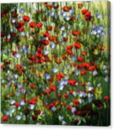 Bunte Sommerwiese Canvas Print