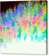 Burst Of Color Canvas Print