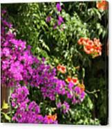 Burgazada Island Flower Color Canvas Print