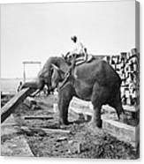 Burma: Elephant Canvas Print