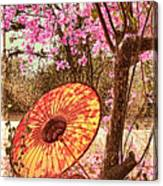 Burmese Spring Canvas Print