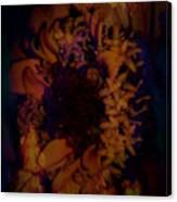 Burning Flower Canvas Print