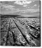 Burren Limestone Landscape In Ireland Canvas Print