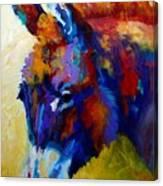 Burro II Canvas Print