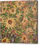 Burst Of Sunflowers. Canvas Print