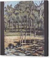 Bush Dam Impression Canvas Print