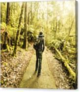 Bushwalking Tasmania Canvas Print
