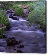 Butler Gulch Water Canvas Print