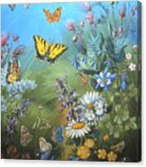 Butterflies And Wildflowers Of Wyoming Canvas Print
