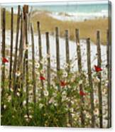 Butterflies By The Seashore Canvas Print