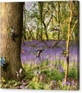 Butterflies In A Bluebell Woodland Canvas Print