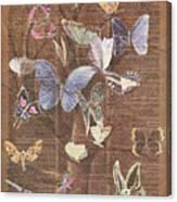 Butterflies On A Tree Canvas Print