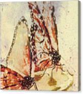 Butterflies On An Orange Slice Canvas Print