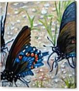 Butterflies Original Oil Painting Canvas Print