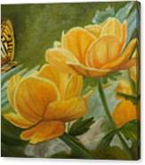 Butterfly Among Yellow Flowers Canvas Print